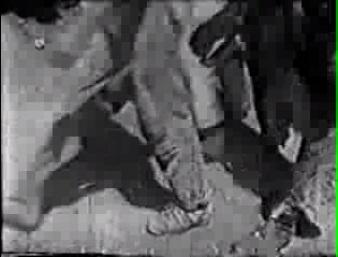 Os pés dos operários paulistanos à guisa dos pés dos operários berlinenses: anônimos e automáticos.
